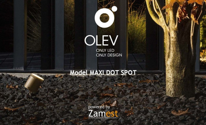 Maxi Dot Spot by Olev